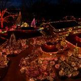 Patti's Christmas Lights