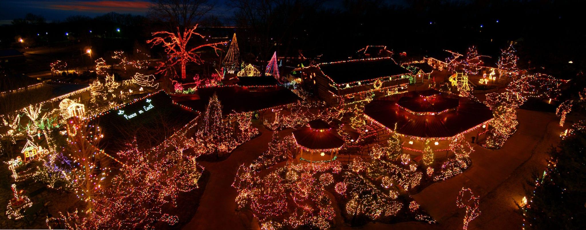 Patti\'s Christmas Lights - Specialistsinpaincare